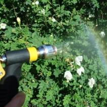 Gießwasser für Balkon und Garten