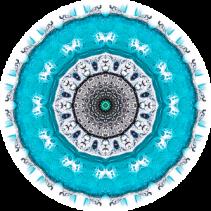 21.8.17 Erfahrungsberichte Aquadea21 Projekt